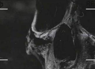 Děsivá videa z Japonska DarkTown.cz - creepypasty darkweb deepweb historky legendy záhady děsivé strašidelné creepy příběhy strach videa obrázky články