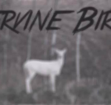 Cervine Birth Ztracená videa youtube video záznam darktown.cz creepypasta jelen liška fox dead děsivé příběhy
