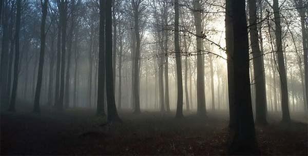 Creepypasta česky oni bytosti z lesa strach stodola darktown.cz strašidelný příběh creepy děsivé