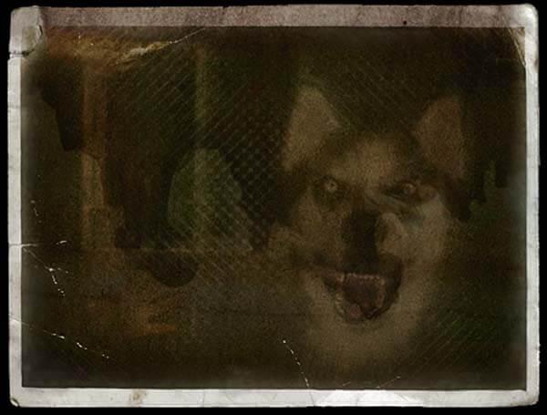 smile.jpg creepypasta smile dog česky creepy pics obrázek pes a krvavá ruka děsivé příběhy strach