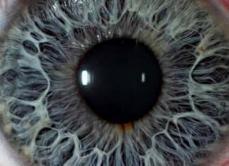 The Feeling eye oko creepypasta česky děsivé ten pocit když darktown.cz