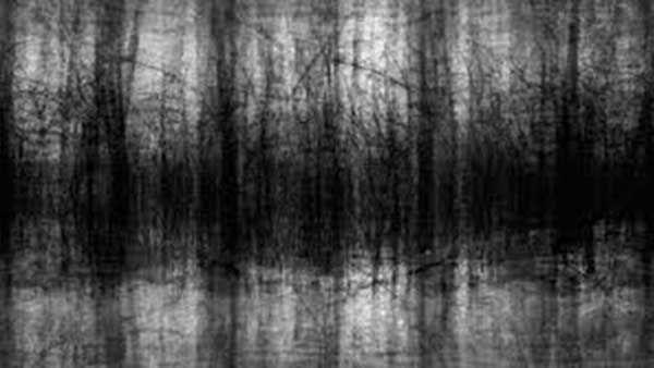 Photo of Black Noise – Creepypasta