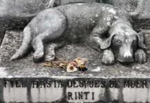dead dog grave mrtvý pes creepypasta creepy děsivé creepycon darktown.cz czech česky