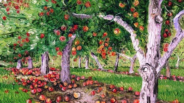 Photo of Best Apples