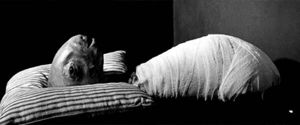 mazaci hlava erasherhead film 1977 dej horroru creepypasty fulci darktown