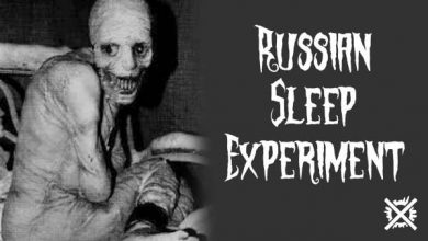 Photo of Russian Sleep Experiment