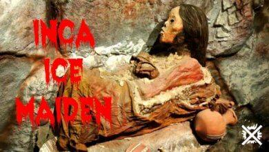 Inca Ice Maiden Článek Darktown